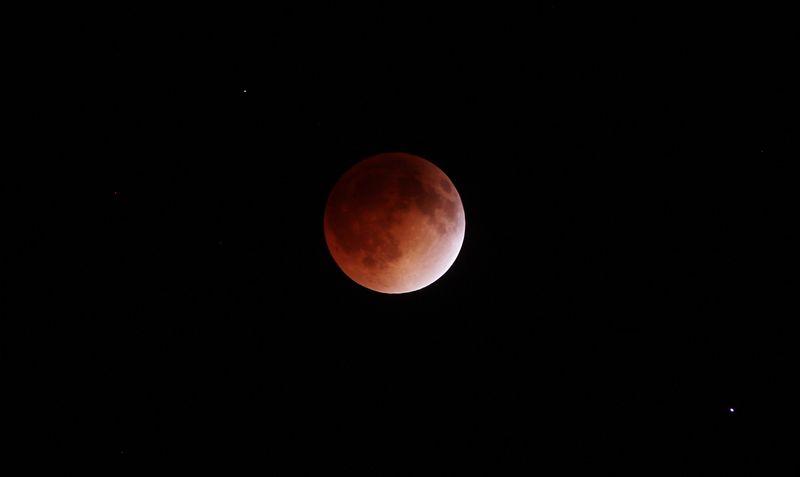 Blood moon copy