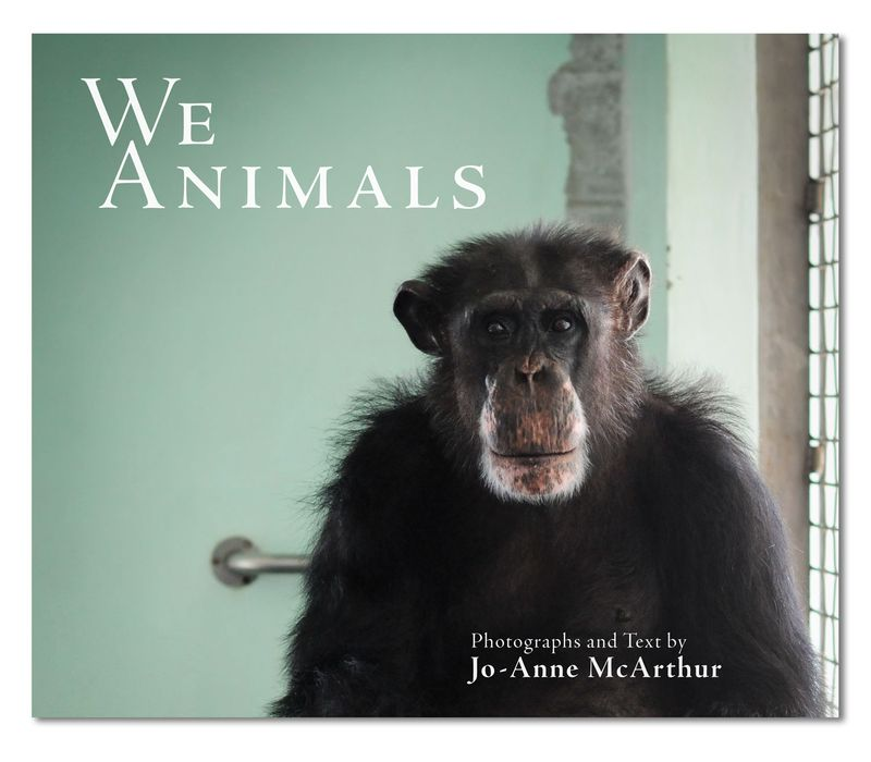 We Animals cover_web resolution