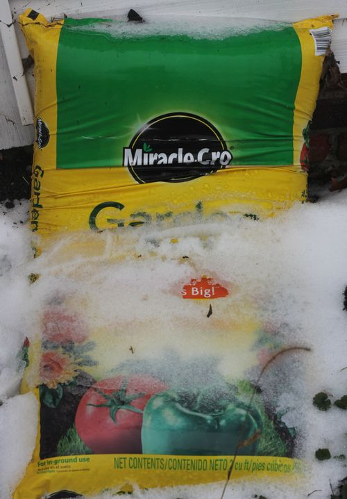 Miracle grow in ice